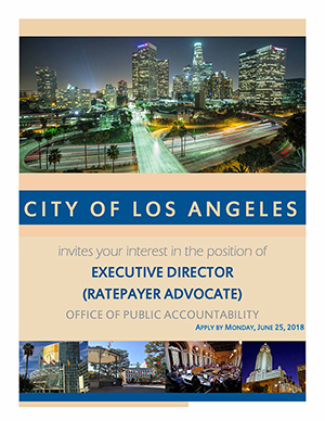 Executive Director Position Brochure