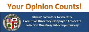 Public Opinion Input Survey (English)